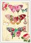 Postcard Edition Tausendschoen | Schmetterlinge